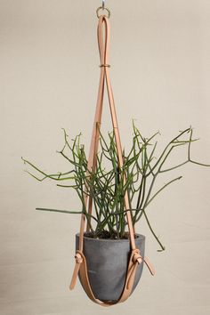 Long Leather Plant Hanger by Open Habit - Beam & Anchor
