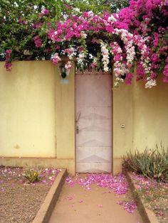 Into beautiful flower garden.