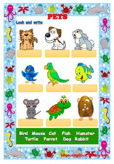 PETS (with video) drag and drop exercise Language: English Level/group: Elementary School subject: English as a Second Language (ESL) Main content: Animals Other contents: pets Alphabet Song Video, Animal Riddles, Weather Song, Rainbow Songs, Learn English, English Quiz, English Games, Teaching English, The Kissing Hand