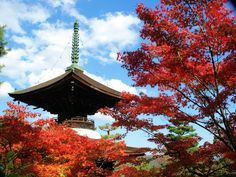 京都  小倉山  常寂光寺。多宝塔。