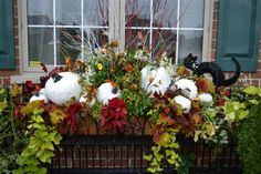 Decorate window boxes with potato vine and coleus b/c they last and the colors are spectacular thru fall! The addition of the white pumpkins.