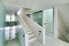 Jellyfish House | Wiel Arets Architects | Archinect