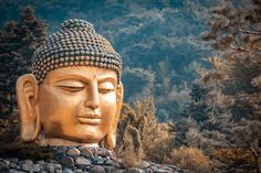 Find Big Head Buddha Statue Waujeongsa Temple stock images in HD and millions of other royalty-free stock photos, illustrations and vectors in the Shutterstock collection. Thousands of new, high-quality pictures added every day. Access Bars, Aktiv, Temple, Buddha, Mona Lisa, Photo Editing, Freedom, Royalty Free Stock Photos, Statue