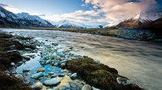 new zealand wildflower scenery   Megapost Wallpapers HD 1920x1080