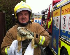Firefighter Tom Ardern is with the rescued iguana.