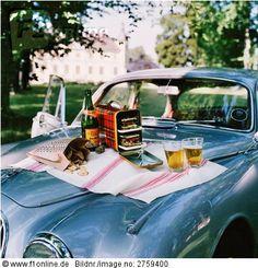 not your average picnic  Copyright: Johner Lizenzpflichtiges