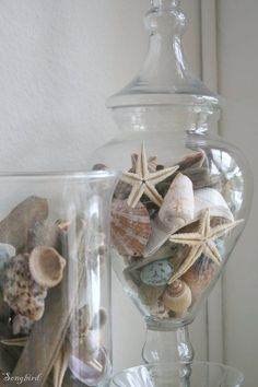 Shells and sea stars looking pretty in glass vases and apothecary jars.