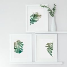 Set of 3 Botanical Art Prints Watercolour Leaf Print Home