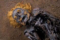 Strange and Petrified Bodies Found in European Peat Bogs Bog Body, La Danse Macabre, Iron Age, Ancient Artifacts, Weird World, History Facts, Ancient History, Archaeology, Creepy