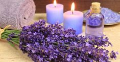 What are the benefits of lavender floral water? In addition, lavender floral water is also an ally against lice. Home Remedies For Scabies, Sleep Remedies, Natural Home Remedies, Herbal Remedies, Essential Oils For Depression, Essential Oils For Sleep, Lavender Oil For Hair, Lavender Flowers, Lavender Fields