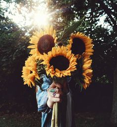 """1,849 Likes, 67 Comments - Caitie (@ktnewms) on Instagram: """"Sunflowers make my soul happy. """""""