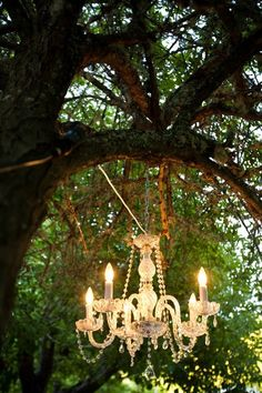 I will hang a chandelier in my trees - this would be cool for an outdoor wedding ...