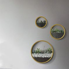product image for Wall Planters