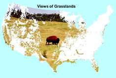 The Great Plains.............Home...............