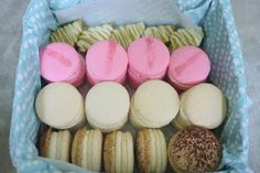 frosted matcha shortbread, hibiscus macarons, vanilla bean macarons and bailey's macarons