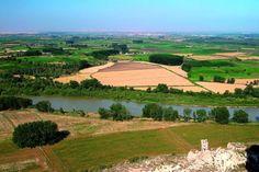 """El Ebro tiene """"problemas respiratorios"""" por una gestión inadecuada del caudal"""