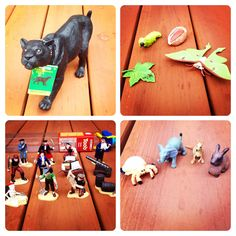 Safari Ltd Toys
