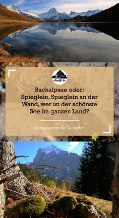 Travel Around The World, Around The Worlds, Grindelwald, Switzerland Hiking, Holiday Time, Places To See, The Good Place, Travel Inspiration, Journey