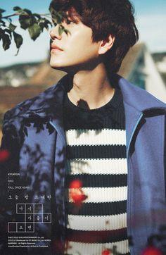 He looks so perfect.. 0.0 A million pieces Photos #Kyuhyun
