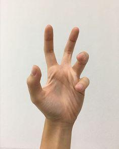 Hand Drawing Reference, Human Reference, Anatomy Reference, Reference Images, Photo Reference, Art Reference, Hand Anatomy, Body Anatomy, Body Drawing