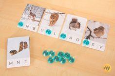 Anlaute Tiere im Schnee - Wunderwerkstatt