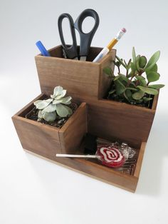 DIY Desktop Organizer and Succulent Planter