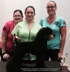 Our UpScale Tail, Pet Grooming Groomer Stylist takes 1st Place at All American Grooming Show www.theupscaletail.com