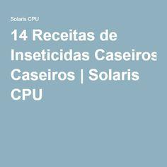14 Receitas de Inseticidas Caseiros | Solaris CPU