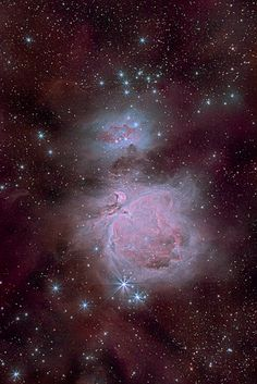 m42 (great orion nebula) and ngc1977 (running man nebula) - 7h20m   by pfile