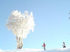 Ski Cerro Mirador Punta Arenas (Chile) #sinbadtrips.   Sinbad