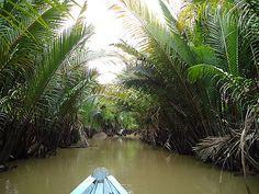mit dem Sampan durch den Mekong Dschungel in Vietnam