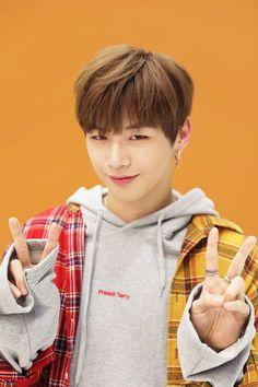 Wanna-One - Kang Daniel Jinyoung, Daniel K, Prince Daniel, Wattpad, Fandom, Street Dance, Kim Jaehwan, Ha Sungwoon, Seong