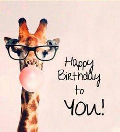 Giraffe Happy Birthday To You! birthday happy birthday happy birthday wishes birthday quotes happy birthday quotes happy birthday pics birthday images happy birthday to you birthday image quotes happy birthday image Happy Birthday Wishes For A Friend, Birthday Wishes Funny, Happy Birthday Pictures, Happy Birthday Messages, Happy Birthday Funny, Happy Birthday Quotes, Happy Birthday Greetings, Birthday Memes, Happy Birthday Little Girl