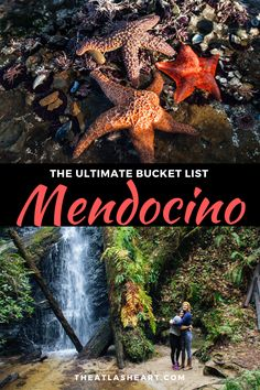The ultimate travel bucket list for the best things to do in Mendocino, CA. From the best Mendocino restaurants, to what to see in downtown Mendocino and even a guide to hiking in Mendocino, find out California Getaways, Mendocino California, California Love, California Coast, Northern California Travel, Mendocino Coast, San Jose California, Places To Travel, Santa Cruz