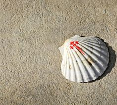 Blog del Camino | Peregrinos del Camino de Santiago Camino Walk, The Camino, Spanish Sides, St Jacques, Spain, Scallop Shells, Knights, Paths, Walking