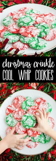 Christmas Crinkle Cool Whip Cookies are a blast to make with the kids! Everyone loves these easy Christmas cookies, just be ready to get a little messy! via @breadboozebacon