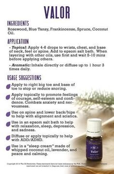 Valor essential oil Oily Families Essential Oil Starter Guide by The Oil Revolution Designs Valor Young Living, Young Living Oils, Young Living Essential Oils, Young Living Panaway, Young Living Purification, Natural Essential Oils, Essential Oil Diffuser, Essential Oil Blends, Valor Essential Oil Uses