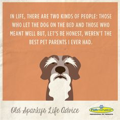 In life, there are two kinds of people: those who let the dog on the bed and those who meant well but, let's be honest, weren't the best pet parents I ever had. #dog #advice