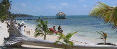 Beach @ Portofino Beach Resort in Belize