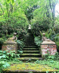 "Debby: Botanica Trading: ""SECRET GARDEN, Mount Macedon, Victoria, There is just the right mix of benign neglect and self…"" Next Garden, Garden Art, Garden Ideas, Angkor, Feng Shui, The Secret Garden, Enchanted Castle, Victoria, Reasons To Smile"