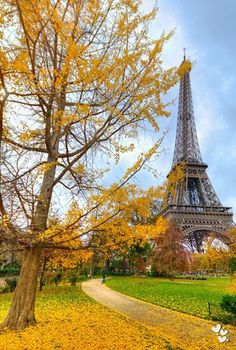 ❤ Autumn in Paris. Have seen Paris in summer, three more seasons and reasons to visit again