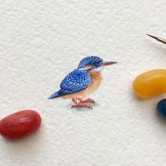 Day 108/120 (28/30 #tiny_creaturesdays series). A kingfisher Size 25 x 18 mm. - Inspired by the photos of @garypang - #kingfisher #your_best_birds #art #art_daily #art_worldly #arts_help #arts_gallery #artsfeatures #artscrowds #artistic_unity_ #artmaster #art_collective #blvart #dailyart #illustration #instaartexplorer #global_artworks #miniature #miniart #miniatureart #sharingart #supportartists #tinyart #tiny_worlds_living #top_watercolor #watercolor #waterblog #watercolorist #worldofa...