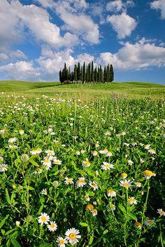 Tuscany _ Italy