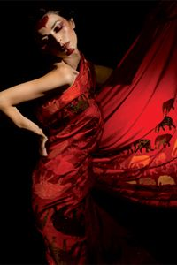 Deep Red!: Fun Party Sari! Look at the elephants on the sari! nice touch