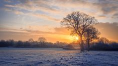 Winter Rise - Sunrise on a winter morning