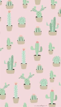 Another cute cactus wallpaper for iPhone or computer! Cactus Backgrounds, Tumblr Backgrounds, Cute Wallpaper Backgrounds, Tumblr Wallpaper, Wallpaper Iphone Cute, Pretty Wallpapers, Aesthetic Iphone Wallpaper, Aesthetic Wallpapers, Cute Wallpapers For Ipad
