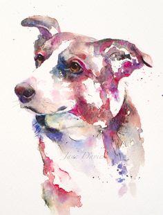 Pet portrait of a Collie painted by watercolour artist Jane Davies