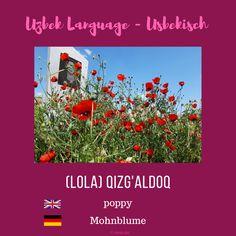 """Uzbek """"poppy""""; Usbekisch """"Mohnblume"""" #uzbeklanguage #uzbek #usbekisch Uzbek Language, Poppy, Poppies"""