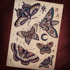 20 Ideas tattoo traditional moth insects - MY World Traditional Butterfly Tattoo, Neo Traditional Tattoo, American Traditional, Moth Tattoo Design, Tattoo Designs, Trendy Tattoos, Cool Tattoos, Borboleta Tattoo, Moth Drawing