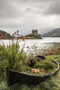 Eilean Donan - View of Eilean Donan castle near Dornie in the scottish highlands